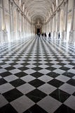 Diana's Gallery. In Venaria Reale (Italy) royal palace Royalty Free Stock Images