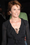 Diane Lane Stock Photos