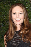 Diane Lane Stock Photo