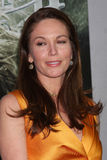 Diane Lane Stock Images