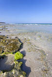 Diani Beach, Kenya Royalty Free Stock Image