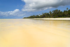 Diani beach with the tide coming in Royalty Free Stock Photography