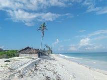 Diani plaża zdjęcia stock