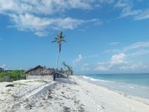 Diani strand arkivfoton