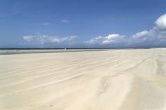 Diani strand i Kenya på lågvatten Arkivbilder