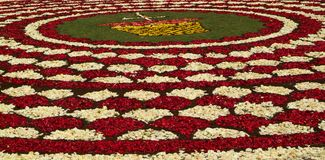 Diano Marina, Italy - June 10, 2007: Infiorata Lig. During the eve of the religious feast of Corpus Christi, including the night, the streets are depposti the Stock Photography