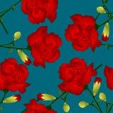 Dianthus caryophyllus - Red Carnation Flower on Indigo Blue Background. Vector Illustration.  vector illustration