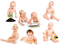 Diaper Babies  Collection Royalty Free Stock Images