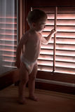 Diapers baby boy, plays with wooden blind. Little boy looks through the wooden blind Stock Image