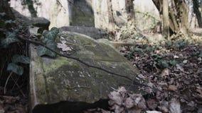 Diapositiva de la cámara en cementerio judío con el matzevah almacen de video