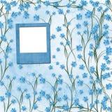 Diapositivas para las fotos con las orquídeas azules Imágenes de archivo libres de regalías