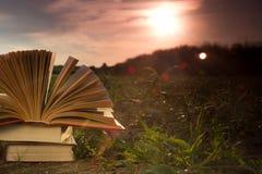 Diario aperto del libro della libro con copertina rigida, pagine smazzate sopra Immagine Stock