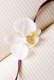 Diario con la orquídea blanca Imagen de archivo