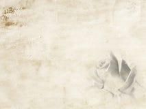 Diario de papel Imágenes de archivo libres de regalías