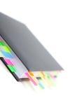 Diario del asunto con tabulaciones coloreadas Fotos de archivo libres de regalías