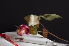 Diario, pluma y Rose muerta Fotos de archivo