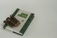 Diario y lápices en el fondo blanco Fotografía de archivo libre de regalías