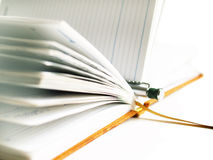 Diary. Notebook and pen on white background Royalty Free Stock Images