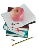 Diary with apple and pills for effective dieting Stock Image