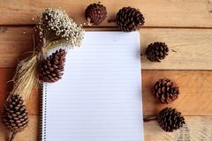Diary book with pine cones on wood background. Royalty Free Stock Photos