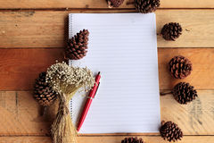 Diary book with pine cones on wood background. Stock Image