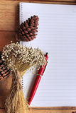 Diary book with pine cones on wood background. Stock Photos
