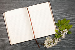 Diary and cherry blossoms Royalty Free Stock Photography
