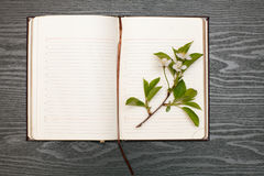 Diary and cherry blossoms Royalty Free Stock Photo