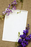 Diary and delphinium Royalty Free Stock Photography