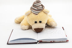 Diary with dolly bear. Love diary with dolly bear. White background and copy space Royalty Free Stock Photography