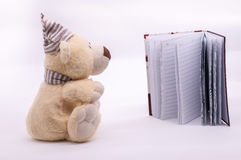 Diary with dolly bear. Love diary with dolly bear. White background and copy space Royalty Free Stock Images