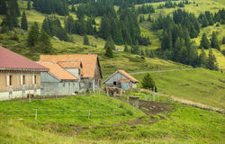 Diary farm on green hills in Switzerland Stock Photography