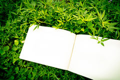 Diary on the grass Royalty Free Stock Photo