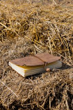 The diary lay on straw Royalty Free Stock Image