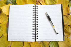 Diary on leaves Stock Photography