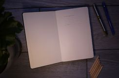The diary records and the accounting and other records. stock image