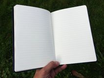 The diary records and the accounting and other records. stock photos