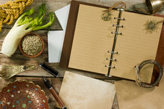 Diary for records and fennel Royalty Free Stock Photography