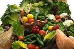 Dias 2 da salada fotografia de stock royalty free