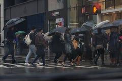 Dias chuvosos Fotos de Stock Royalty Free