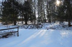 dias da neve Fotografia de Stock