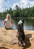 Dias de cão do verão no Algonquin fotos de stock royalty free