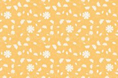 Diasy flowers seamless pattern white yellow orange. Daisy cornflower floral botanical seamless pattern texture. Blooming flowers and swirly frizzy stem leaves Royalty Free Stock Photography
