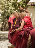 Dibattito dei monaci fotografia stock libera da diritti