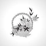 Dibuje la cesta del esquema con negro monocromático de las flores en blanco Fotos de archivo