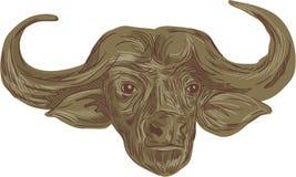 Dibujo africano de la cabeza del búfalo ilustración del vector