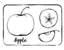Dibujo blanco y negro de la mano del bosquejo de la fruta del bosquejo de la fruta aislado Foto de archivo