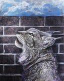 Dibujo de carbón de leña del lince que mira para arriba Fotos de archivo libres de regalías