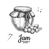 Dibujo de cristal del vector del tarro del atasco del arándano Jalea de fruta y marmala Foto de archivo