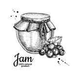 Dibujo de cristal del vector del tarro del atasco de la grosella negra Jalea de fruta y mA Fotografía de archivo libre de regalías